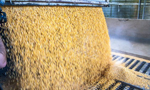 Dust Explosions: 7 of the Most Vulnerable Powder Processors and Manufacturers